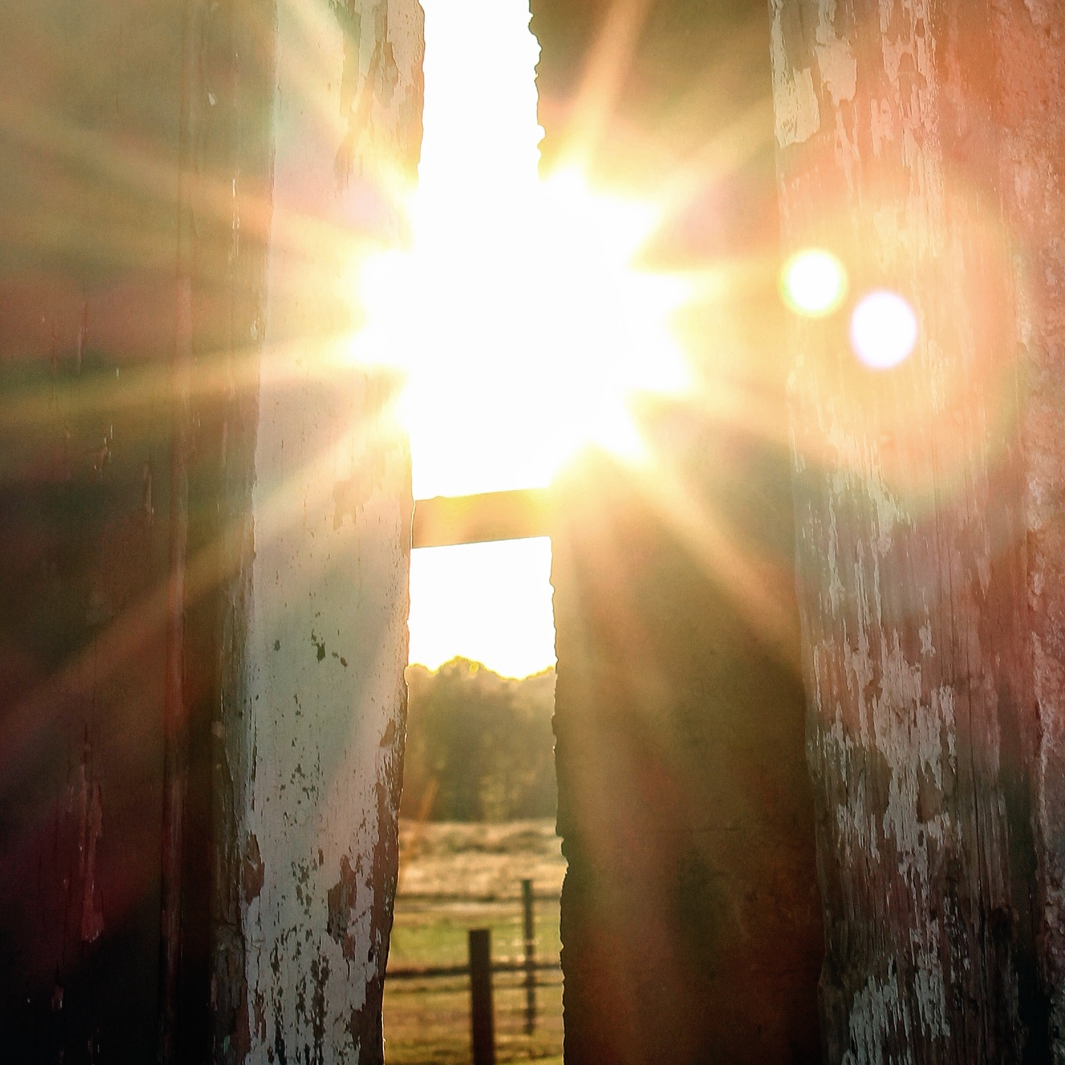 You Are My Sunshine, Copyright (c) livethefinelife.com