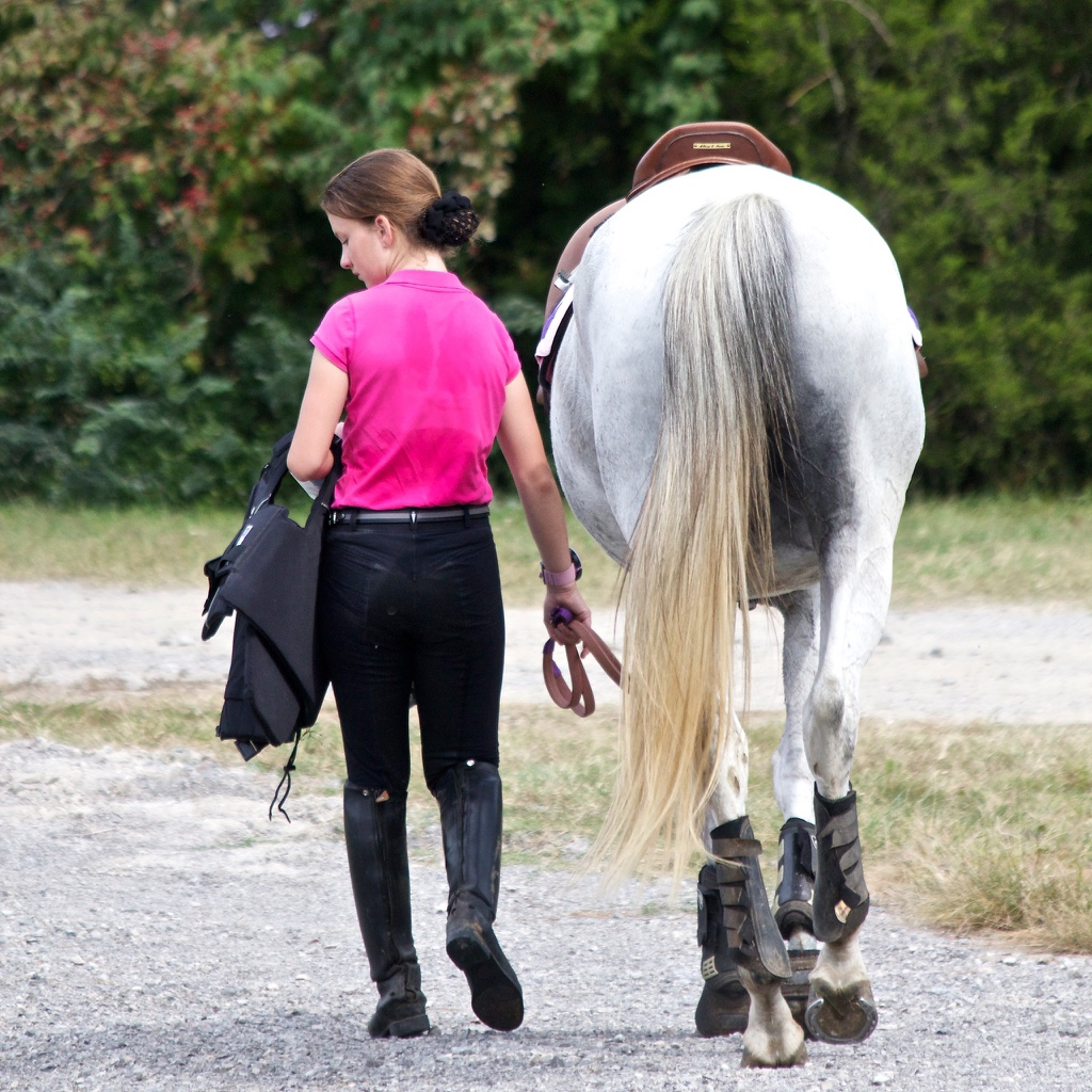 I Will Shoot Your Horse:: Equine Photography: ©livethefinelife.com