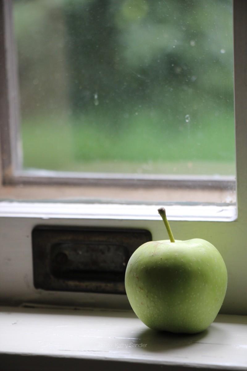 Commitment Phobia:: Old Habits, New House via livethefinelife.com #sdgcottage